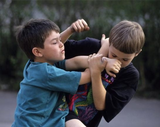 aggression in student with high functioning autism